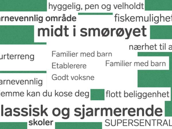 Realistens guide til boligannonser: nordmannen i et nøtteskall.