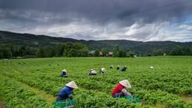 Koronapandemien hamrer inn at åpenhet også gir sårbarhet, skriver Torbjørn Røe Isaksen.