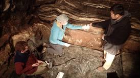 Vår slekts historie ligger gjemt i hulen til Denis