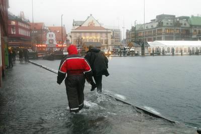 Realistens guide til Bergen.