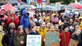 Økosorg: Angsten for det politiske